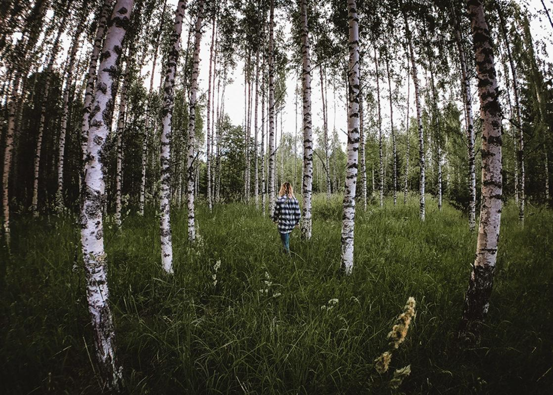 Finland is known for its plentiful birch forests, which are in full bloom during the summer!